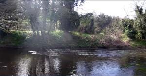 The Dukes Dykes area